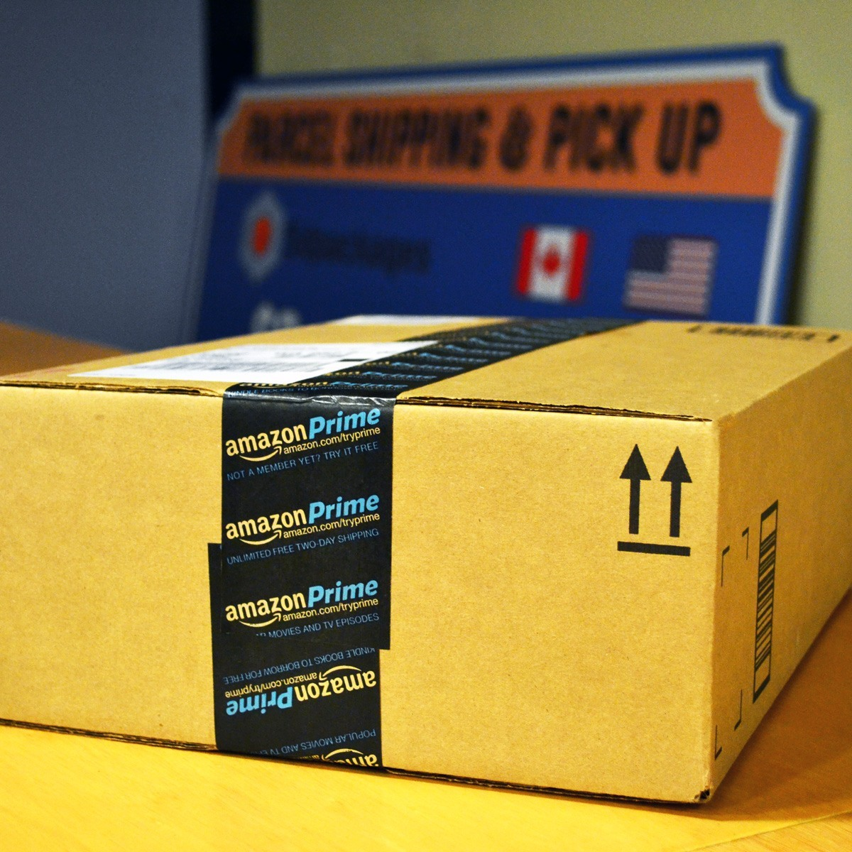 Blaine Parcel Shipping and Receiving | 5dpackages